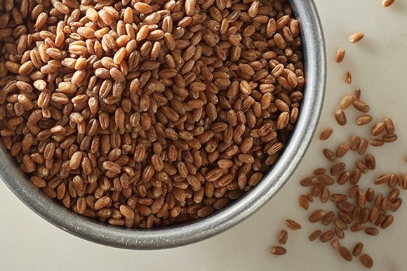 Wheat berries in bowl overhead